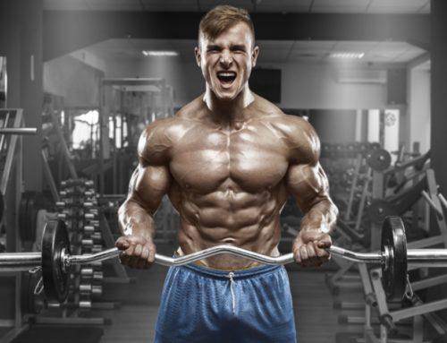 Cómo aumentar tú masa muscular?