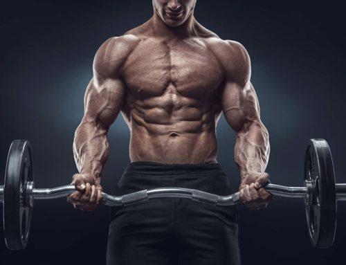 Rutina de Biceps 1