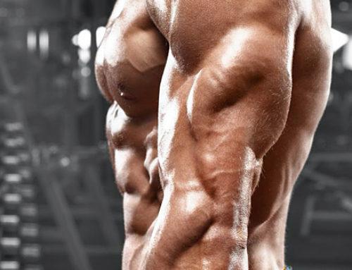 Rutina de Triceps 1
